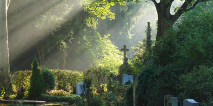 Friedhof Beerdigung